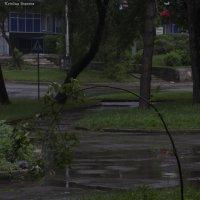 Под давлением :: Кристина Иванова