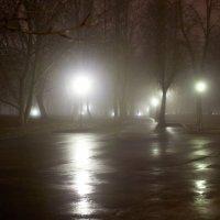 Парк в Великом Новгороде. :: Ольга Лиманская