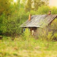 Старый дом. :: Евгений Ставцев