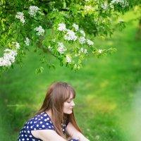 Один раз в год сады цветут :: Mila Popova