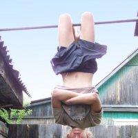 Лето, каникулы :: Алексей Ник