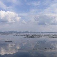 отражение в весеннем озере :: Александр Иванов