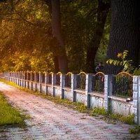 Закат солнца :: Николай Хондогий