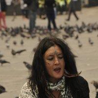Любовь и голуби :: Arximed
