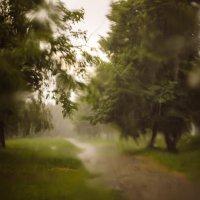 Дощ :: Владислав Дмитренко