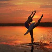Лебединое озеро 3 :: Александр Шахмин