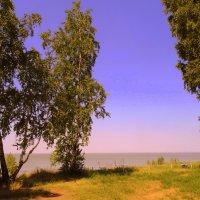 У моря . :: Мила Бовкун