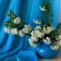 Весенний букетик :: Татьяна Смоляниченко