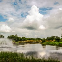 Река Цна. :: Александр Селезнев
