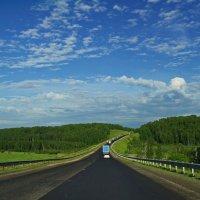 На дороге Новосибирск-Бийск. :: Владимир Михайлович Дадочкин