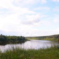 Прогулка по Рязанской области :: Светлана Ларионова
