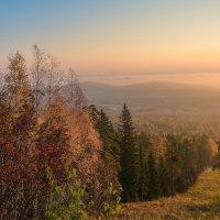 Утренний туман :: vladimir
