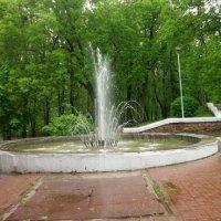 В старом парке :: Галина Бобкина