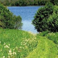 Озеро Долгое, называется :: Владимир Гилясев