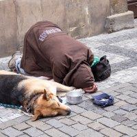 И это тоже Прага :: Петр