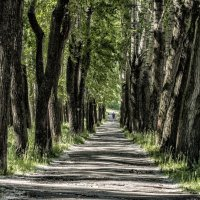 corridor :: Dmitry Ozersky