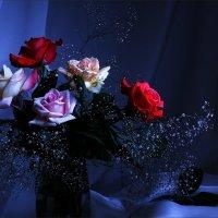 Розы.... :: Валерия  Полещикова