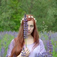 Девушка  с люпинами :: Елизавета Митрофанова