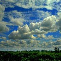 облачный пейзаж :: Александр Прокудин