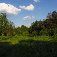 Ура! Снова лето! :: Андрей Лукьянов