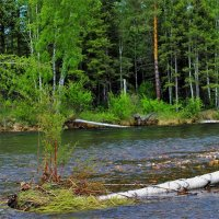 На реке Каратас :: Сергей Чиняев