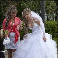 У нашей невесты достойное приданное! :: Алексей Патлах