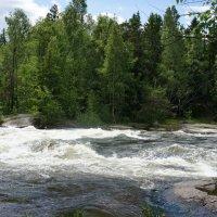 Лангинкоски.  Речные пороги реки Кюмийоки :: Елена Павлова (Смолова)