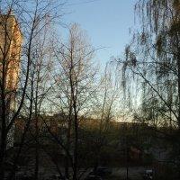 закат :: Светлана Егорова
