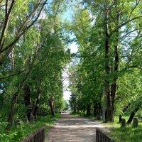 Старый мостик :: Андрей Козов
