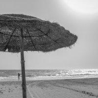 Тунис, Джерба 2016 :: Виталий Шерепченков