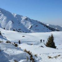 Белое покрывало в горах :: Горный турист Иван Иванов
