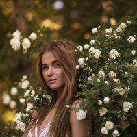 Женя и розы :: Женя Рыжов