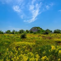 Копанка возле старой шахты :: Юрий Шапошник