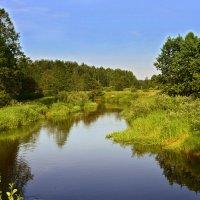 Владимирщина. Река Судогда. :: Алла Кочергина