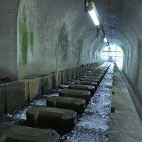 Рыбий тоннель под землёй :: Cawa Xpy