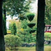 Даманский парк. :: Eva Tisse