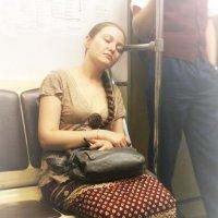 Спящая красавица :: Светлана Шмелева