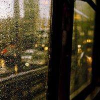 Дождливый трамвайчик :: Семья Фоменковых