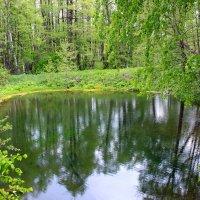 Рай на земле :: Ксения