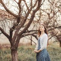 Цветущие сады :: Diana L.