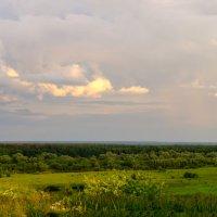 После дождя :: Вячеслав Печенин