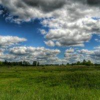 Барашки облаков над полем проплывают :: Милешкин Владимир Алексеевич
