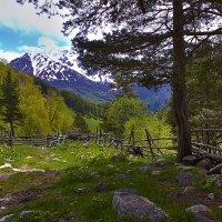 В горах :: Алексей Попов