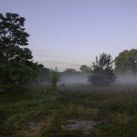 Утро :: Валерий Чернов