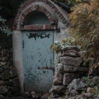 Потайная дверь :: Елена Яшнева