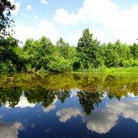 Зеркало воды :: Андрей Снегерёв