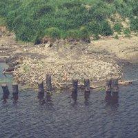 Обмельчание. Остатки старого деревянного моста через реку. :: Evgenija Enot