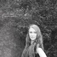прекрасная Рита :: Olga Osminova