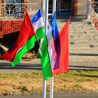 Все флаги в гости будут к нам... :: Светлана