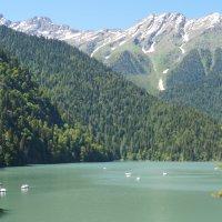 Озеро Рицца :: Ирина Егорова